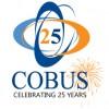 25-Year-logo---fireworks